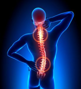 how cardio workouts can affect back problems